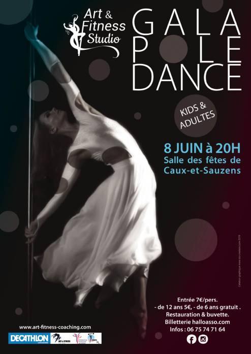 Affiche-gala-pole-dance-web